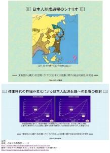 「更新世から縄文・弥生期にかけての日本人の変遷に関する総合的研究」より