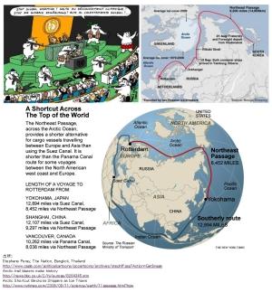 北極争奪戦にホッキョクグマも参戦か