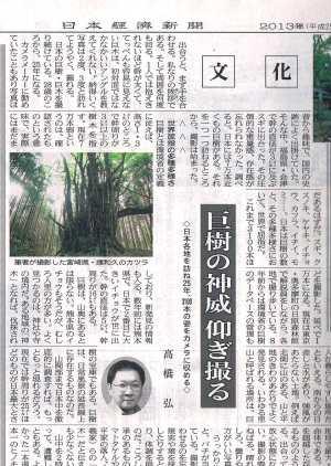 日経:巨樹の神威仰ぎ撮る―巨樹写真家高橋弘氏
